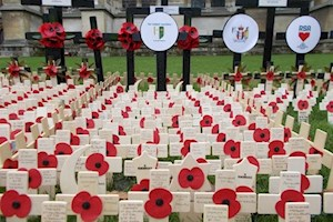 Field Of Remembrance 7 Nov 2019