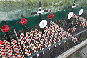 Remembrance Events 2020